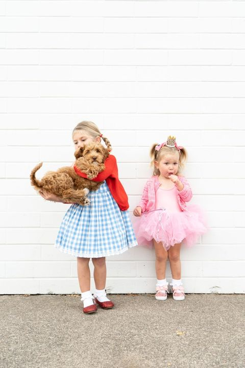 diy wizard of oz costumes kids