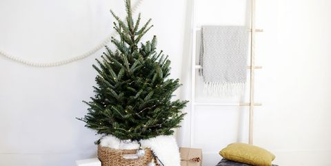 image - Small Christmas Tree Decorating Ideas