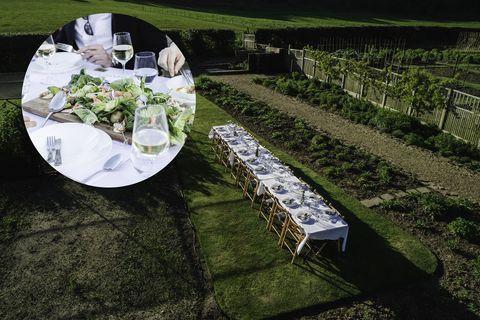 Green, Tablecloth, Table, Grass, Linens, Textile, Tree, Plant, Garden, Lawn,