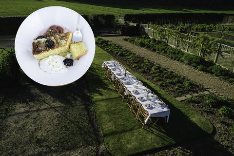 Green, Table, Grass, Food, Cuisine, Dish, Tablecloth, Vegetarian food, Linens, Photography,