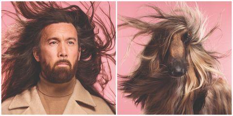 Do You Look Like Your Dog? Afghan