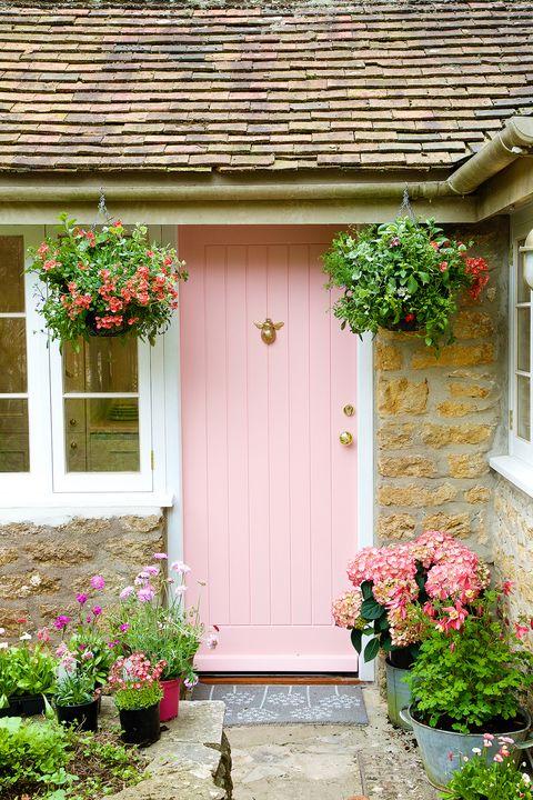 Dobbies front door