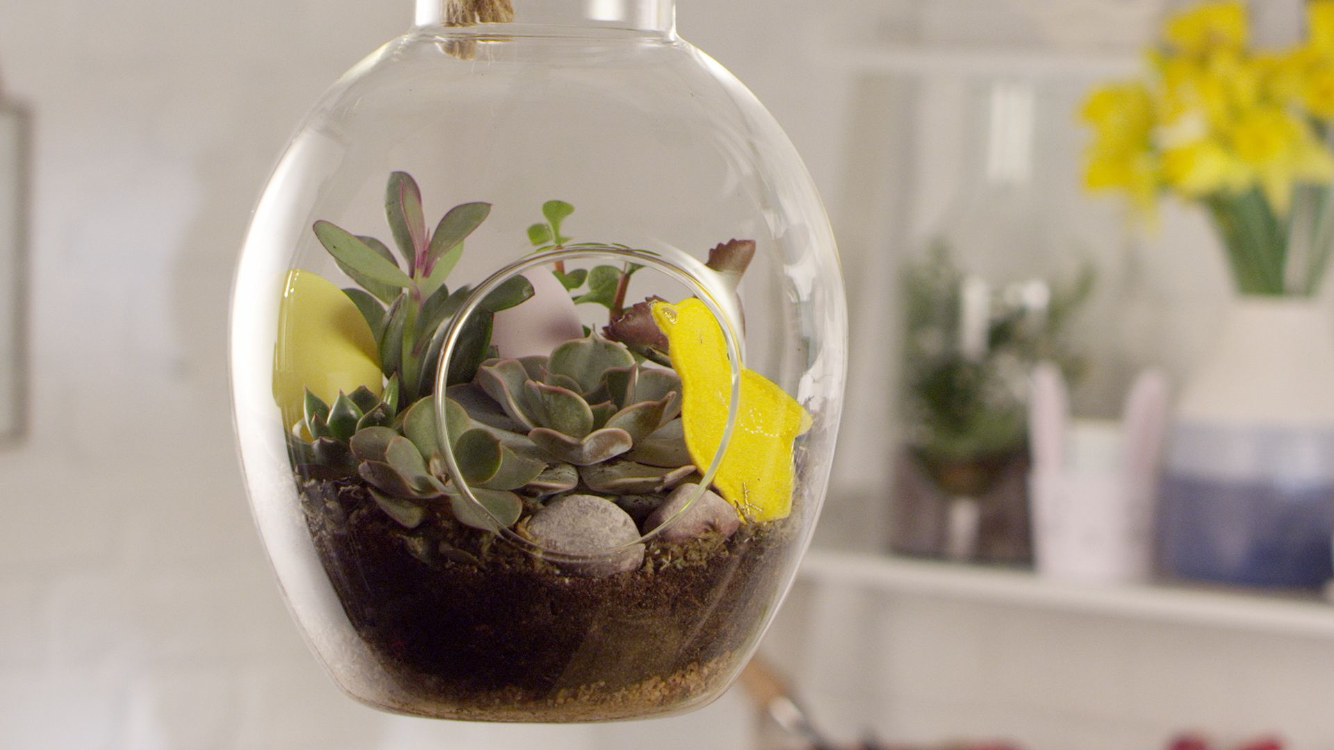 How to make an Easter-themed terrarium