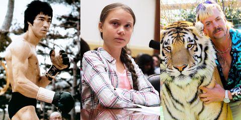 Tiger, Bengal tiger, Felidae, Wildlife, Big cats, Siberian tiger, Carnivore, Terrestrial animal, Adaptation, Organism,