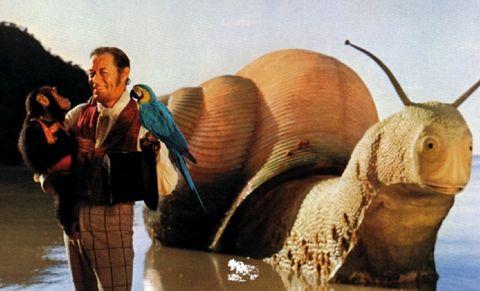 【電影抓重點】小勞勃道尼《杜立德》5大看點!和湯姆霍蘭德重逢的故事太好哭、動物們的古怪個性太爆笑