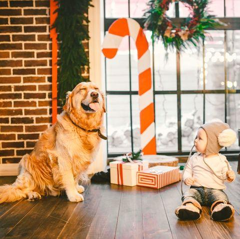 16 Christmas Card Photo Ideas Holiday Photo Card Ideas