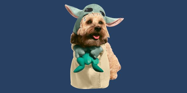 baby yoda dog costume