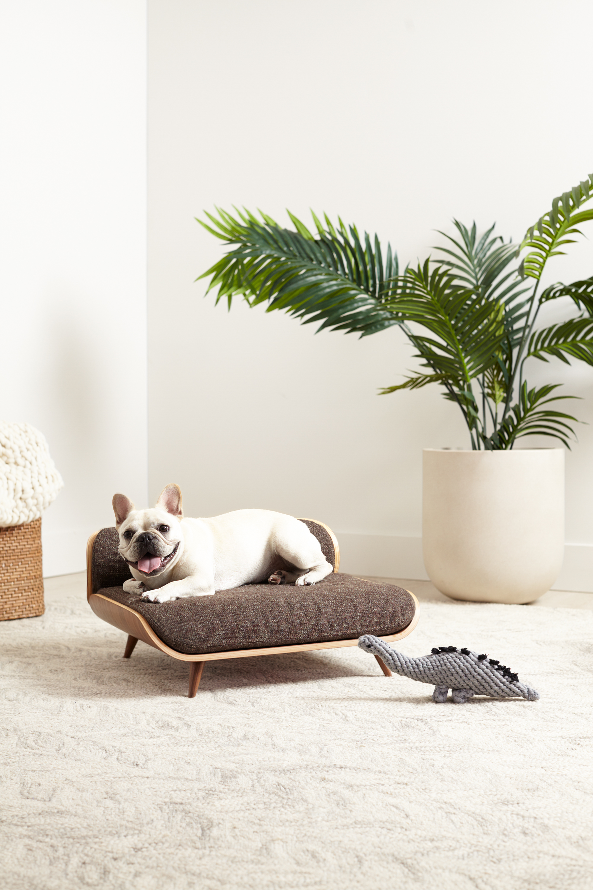 This Mid Century Modern Dog Bed Is Pure Luxury