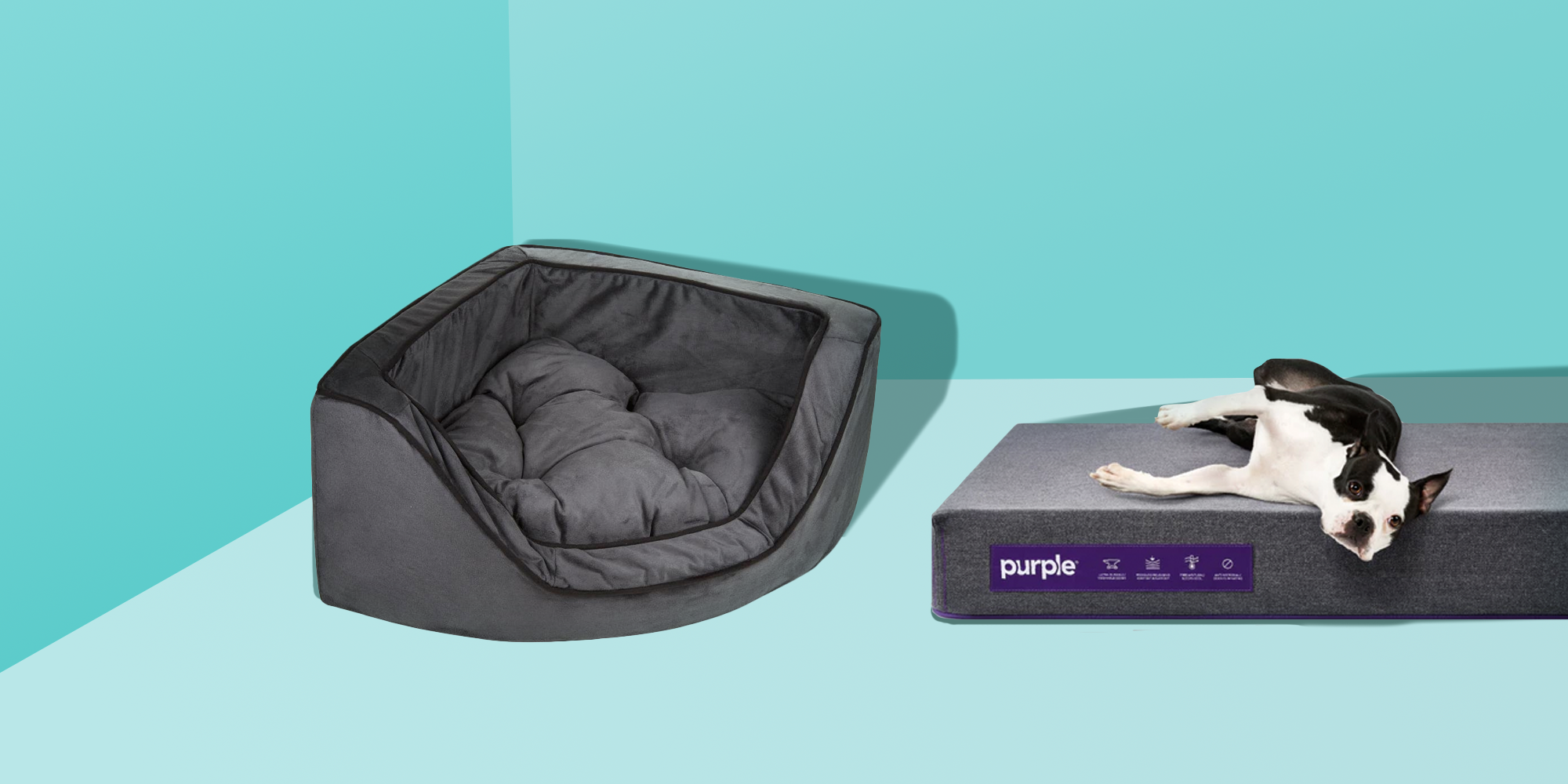 Picture of: 10 Best Dog Beds In 2020 Top Rated Beds For Small And Large Dogs