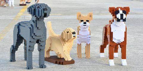 Toy, Lego, Toy block, Animal figure, Canidae,