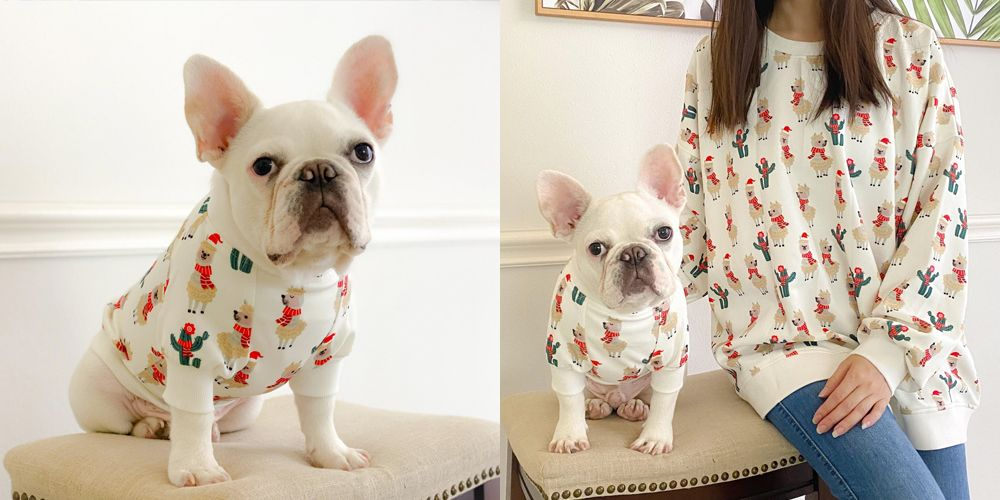 You Can Now Buy Matching Ugly Christmas Sweaters for You and Your Dog