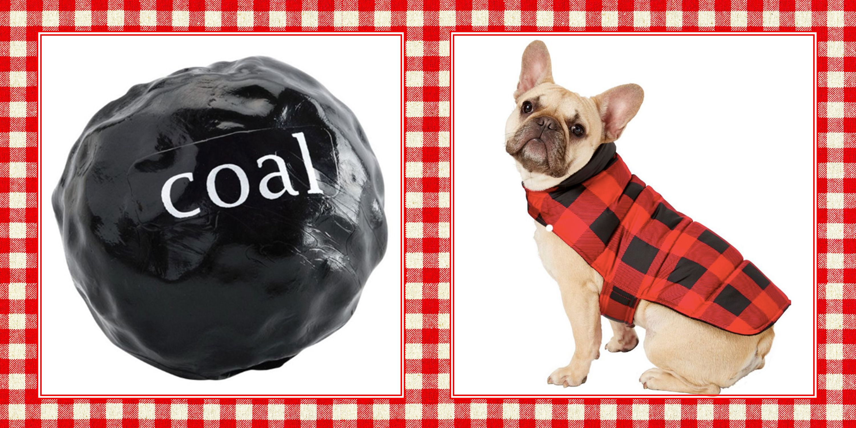 christmas gifts for dogs  sc 1 st  Country Living Magazine & 20 Best Dog Christmas Gifts - Unique Gift Ideas for Dogs