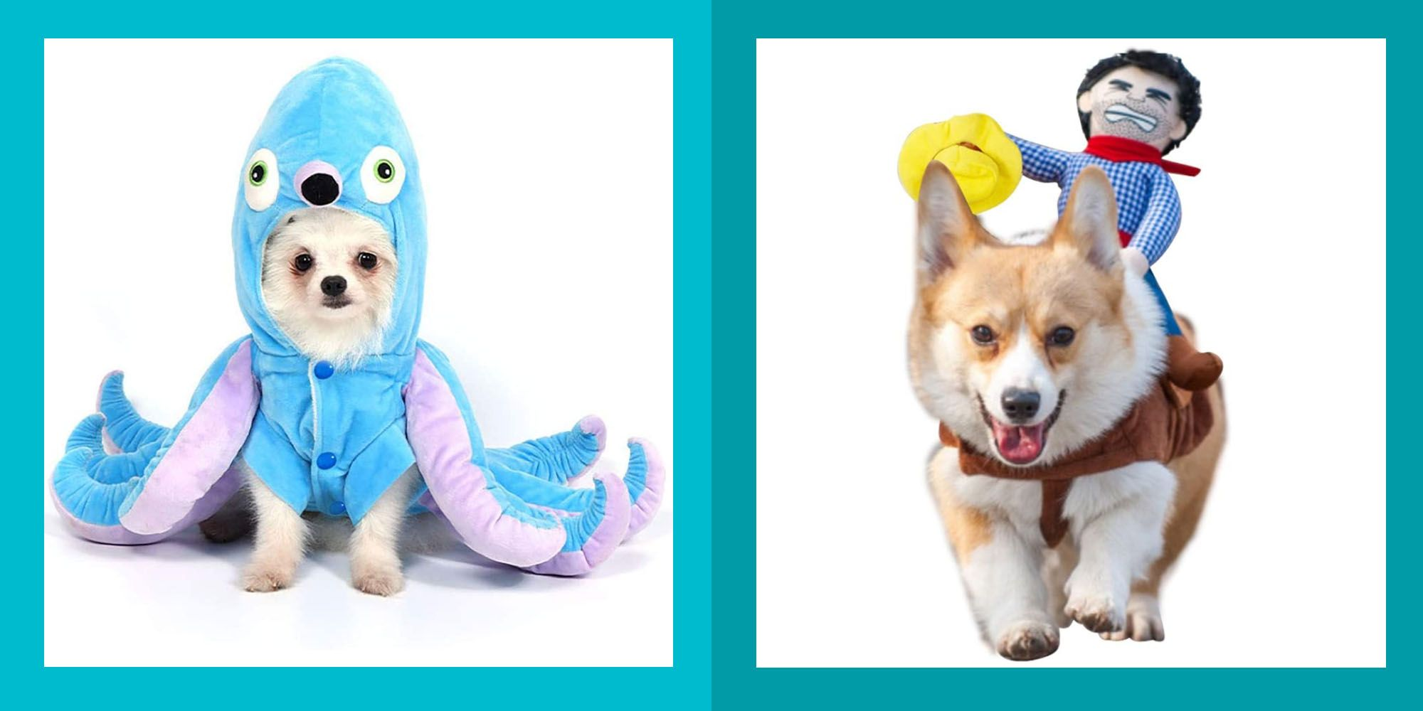 69 Dog Halloween Costumes Cute Ideas for Pet Costumes