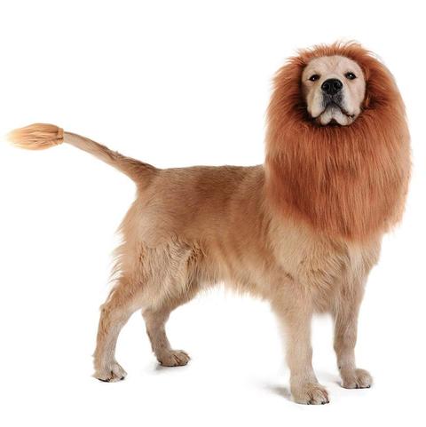 Best Dog Halloween Costumes - Amazon Dog Lion Mane by Tomsenn