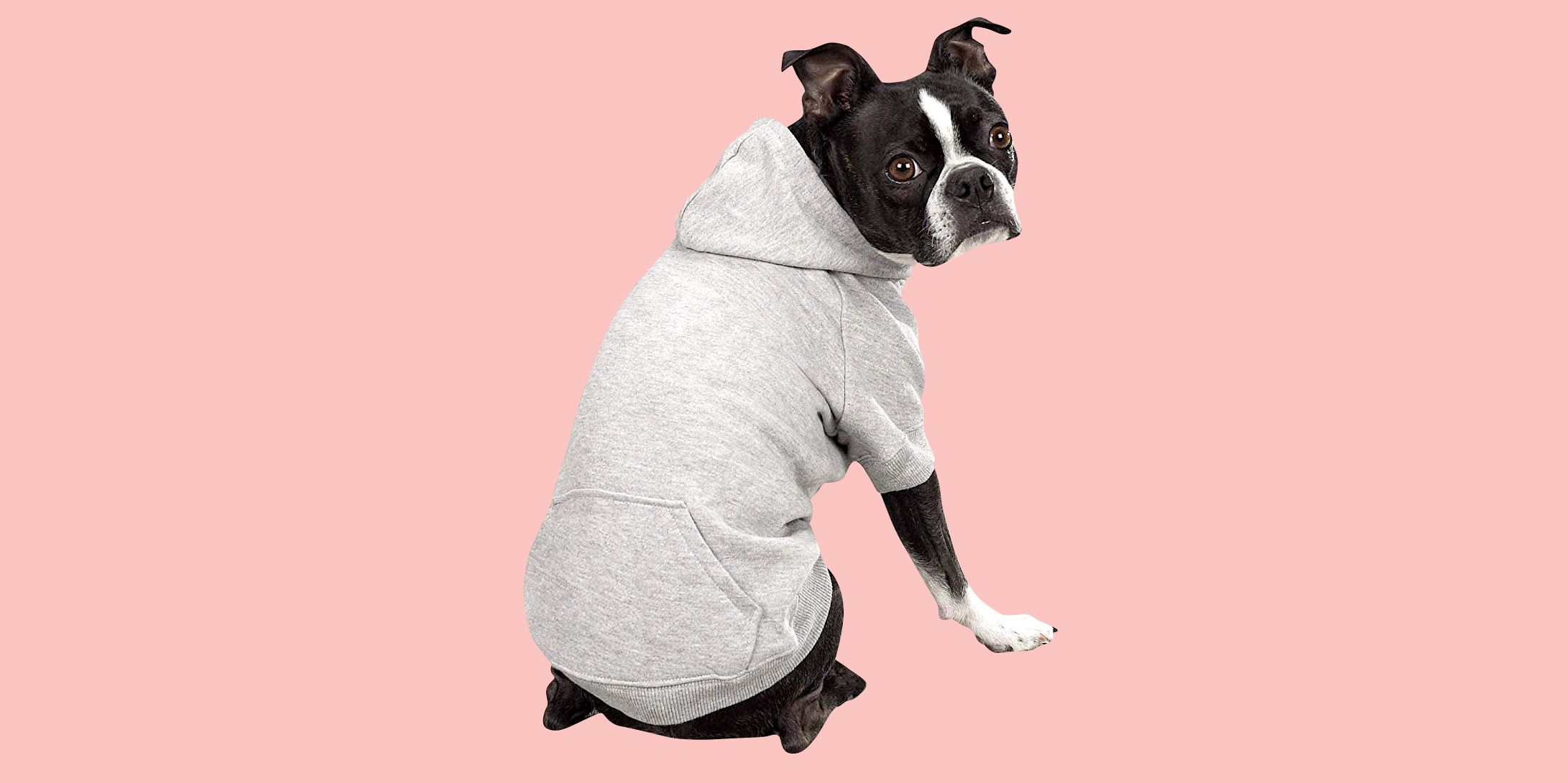 This Top-Rated Dog Hoodie From Amazon Has Over 1,000 Five-Star Reviews