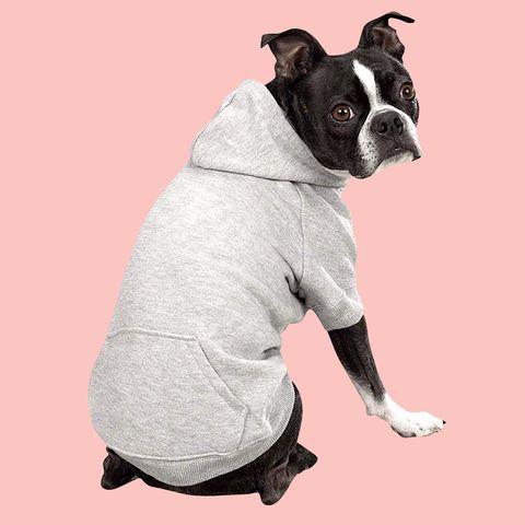 dog hoodie amazon