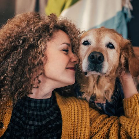 How your pet impacts your relationship