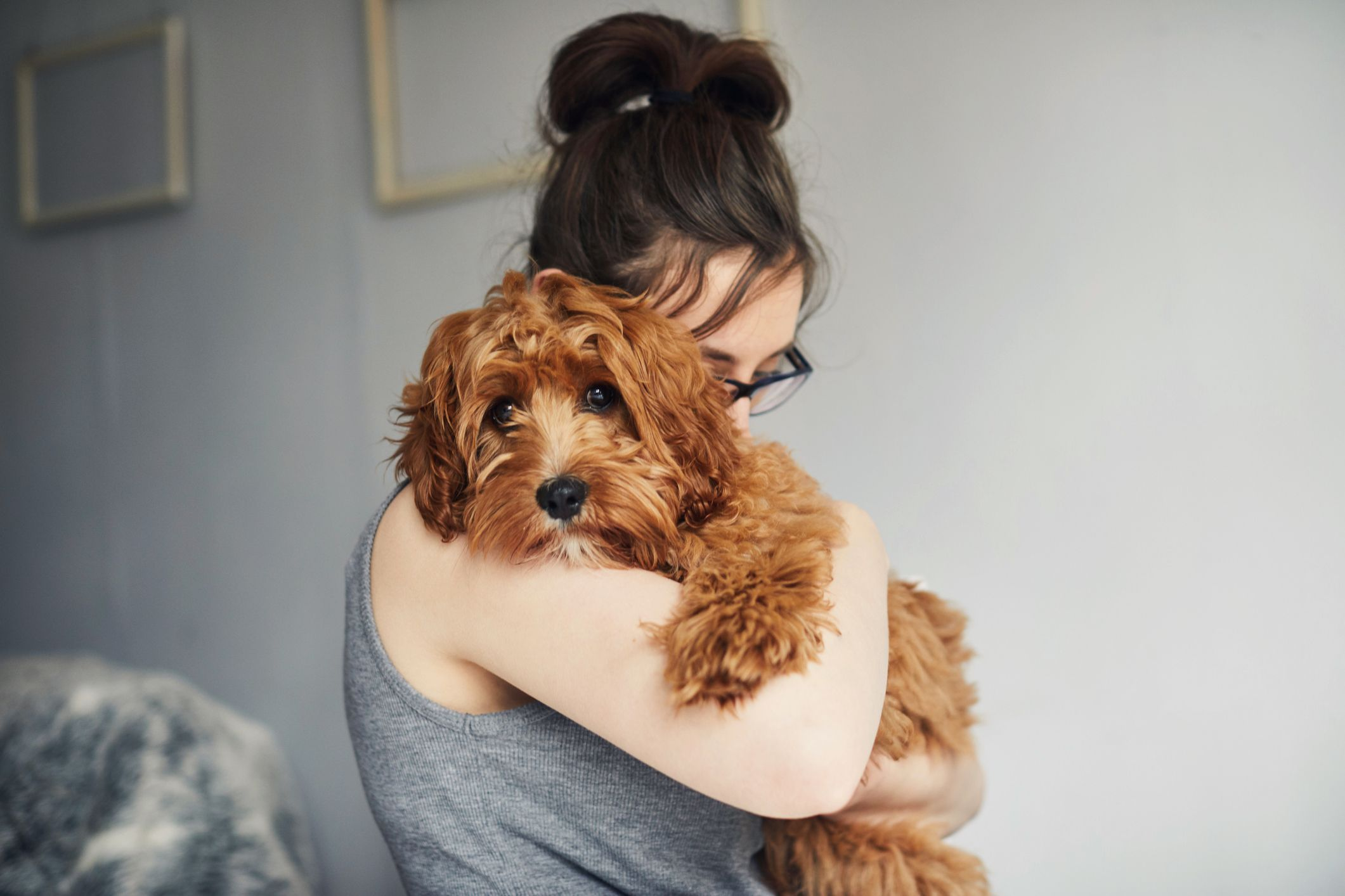 20 Dog Instagram Captions Captions For All Your Puppy Pics