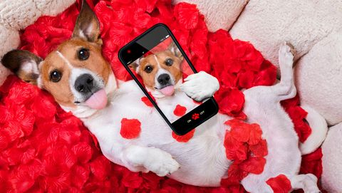 30 Best Valentines Day Captions Cute And Funny Valentines Day
