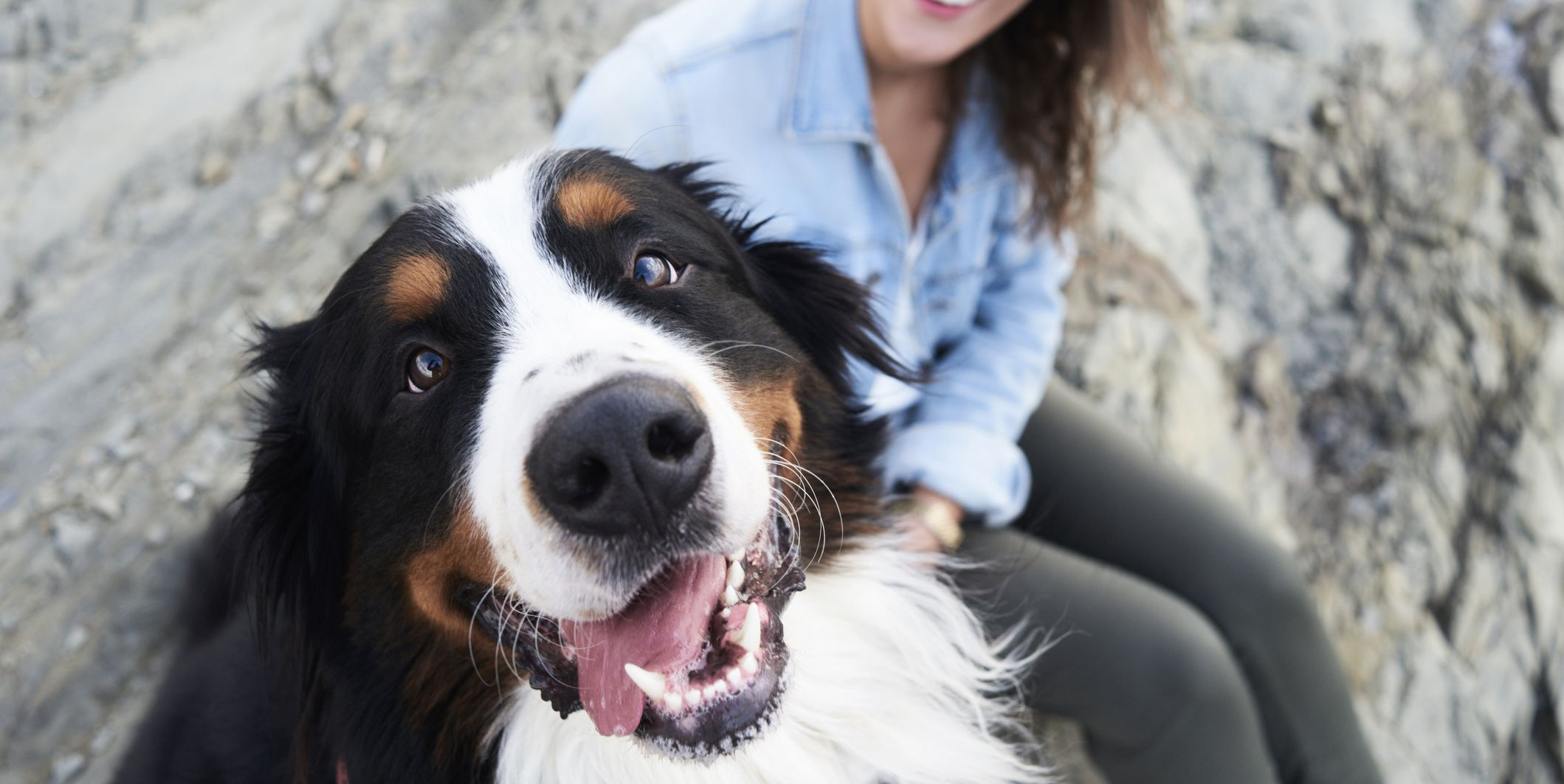 8 physical and mental health benefits of owning a dog