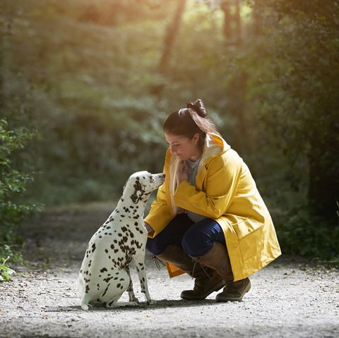 Dog personalities change depending on how you treat them