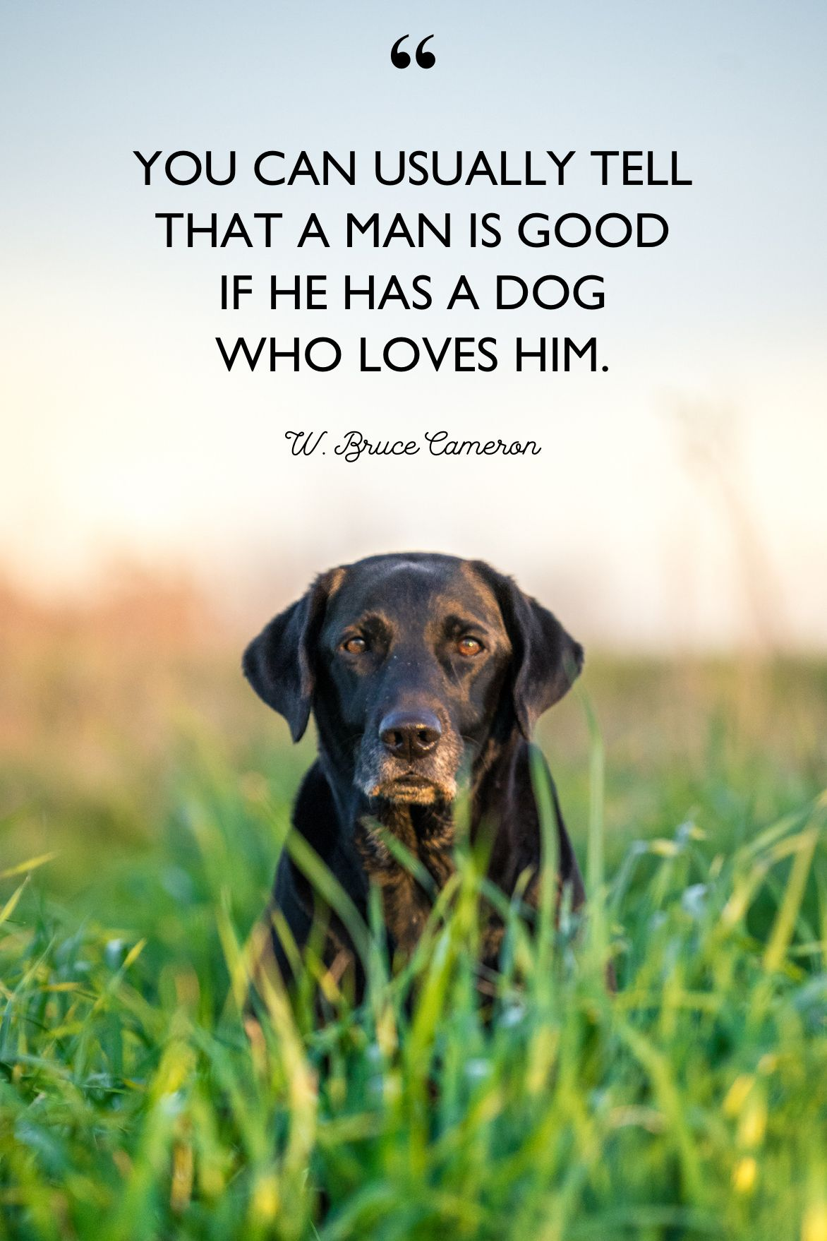 4 Best Dog Quotes - Cute, Sweet Quotes About Dogs