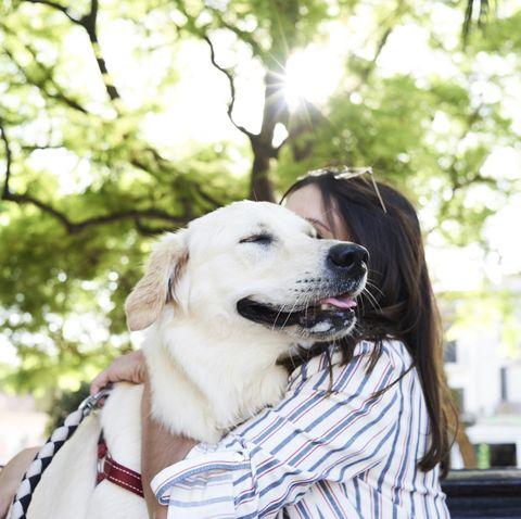 Dog smelling owner