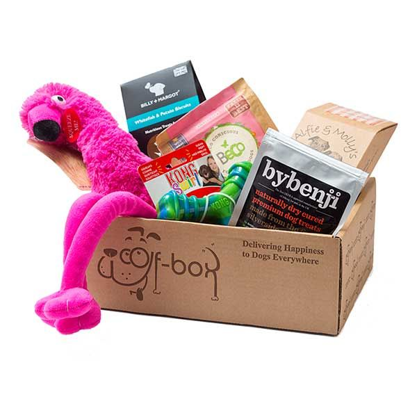 The best dog subscription boxes