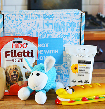 The best dog subscription boxes to try now