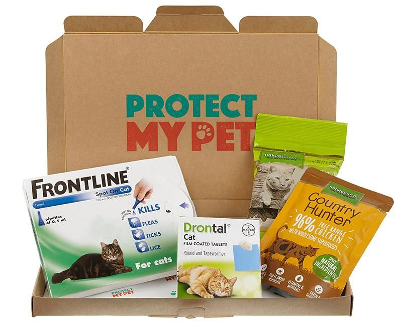 The best dog subscription services revealed