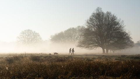 Wandelen in de mist