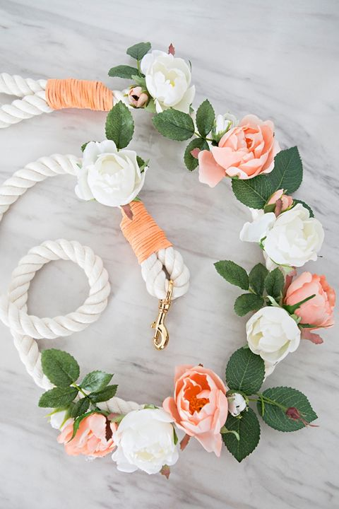 dog wedding ideas diy dog leash