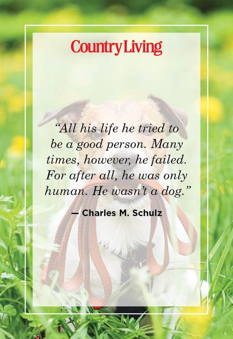 charles m schulz quote about dogs