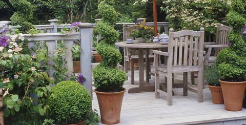 Domestic garden with wooden furniture and parasol on decking, Buxus (Box hedges) cut into topiary shapes
