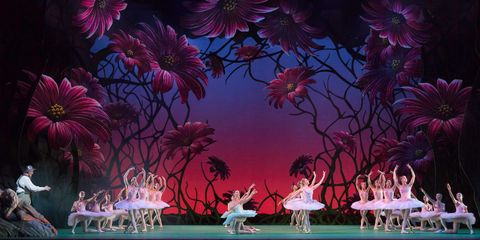 Don Quixote artists of the Royal Ballet