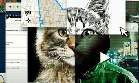 imagen promocional de la serie a los gatos ni tocarlos de netflix