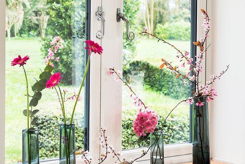 Flower, Floral design, Plant, Flower Arranging, Room, Pink, Floristry, Houseplant, Window, Flowerpot,
