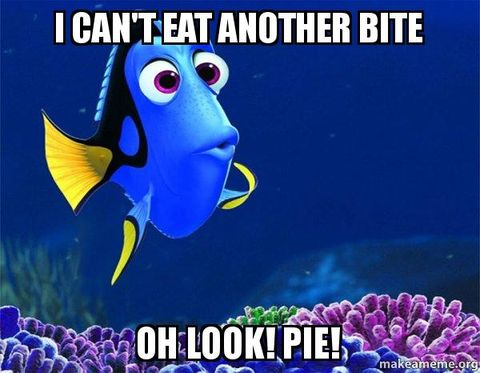 dory pie meme- thanksgiving memes