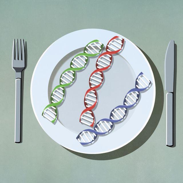dieta genética