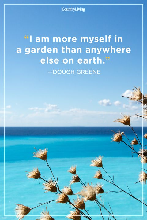 30 Best Summer Quotes and Sayings Inspirational Quotes