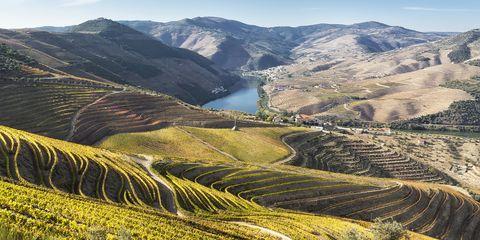 Terrace, Highland, Mountainous landforms, Mountain, Landscape, Valley, Plantation, Hill, Mountain range, Field,