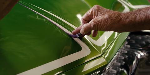 Green, Vehicle door, Hood, Leaf, Grass, Automotive exterior, Auto part, Plant, Windshield, Glass,