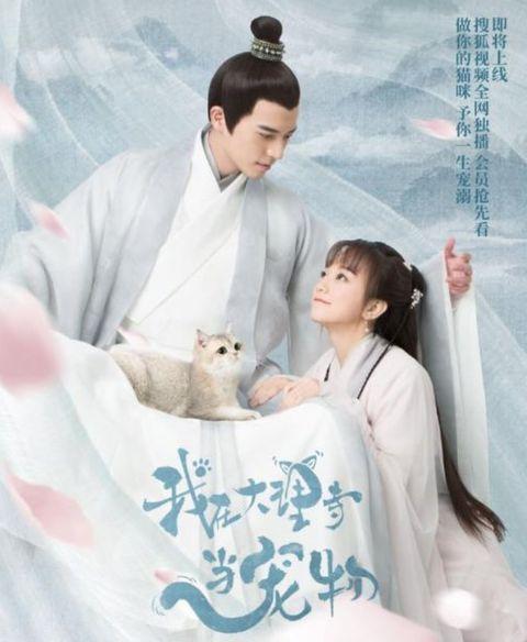 Poster, Drama, Movie,
