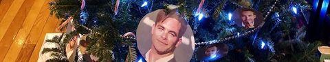 Christmas ornament, Tree, Christmas tree, Christmas lights, Selfie, Christmas decoration, Christmas, Fun, Sky, Event,