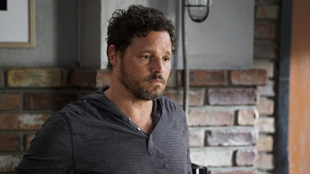 Grey's Anatomy season 16 signs up former Shameless star as Alex Karev's replacement