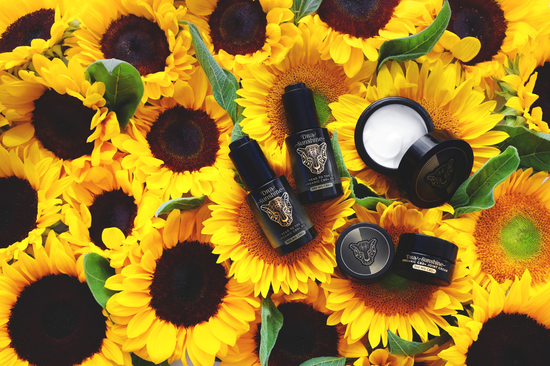 Luxury CBD Skincare Line Dra Sunshine Launches at Bergdorf Goodman