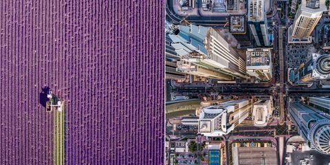 Purple, Architecture, Urban area, City, Violet, Metropolitan area, Facade, Metropolis, Urban design, Lavender,