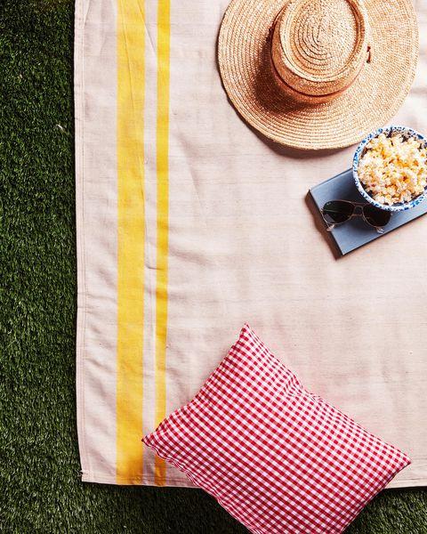 drop cloth picnic blanket