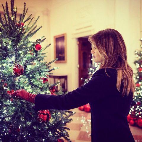 Christmas tree, Christmas, Red, Tree, Christmas decoration, Christmas ornament, Christmas eve, Beauty, Colorado spruce, Plant,
