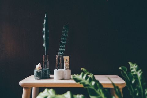 Green, Houseplant, Still life photography, Plant, Table, Room, Architecture, Still life, Flower, Furniture,